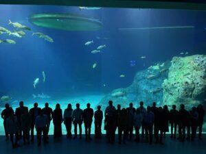 GA at the aquarium